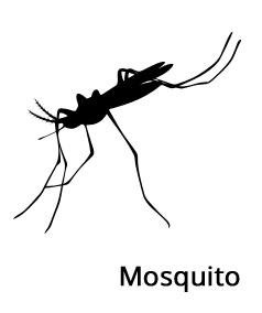 Mosquito Control Ideas by No Insects